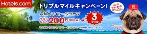 【Hotels.com】トリプルマイルキャンペーン(NEW)