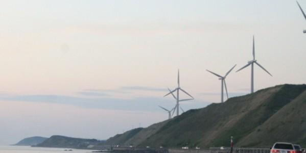 電力自由化で変わるポイント業界図 共通ポイントに挑むポイントとは?