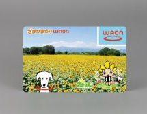 神奈川県座間市、イオンとの提携WAON「ざまひまわり WAON」を発行