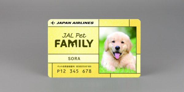 JAL、ペットオーナー向けサービス「JAL Pet FAMILY(JALペットファミリー)」を開始