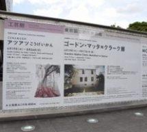 東京国立近代美術館 本館の企画展「ゴードン・マッタ=クラーク展」に行ってきた! ラグジュアリーカードのゴールドカードでは2名無料!