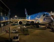 ハワイ ホノルルのANA便でA380「FLYING HONU」に搭乗してみた! 搭乗等に時間がかかるのが問題