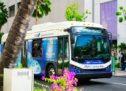 ハワイのワイキキでANAエクスプレスバスに乗車してみた! アラモアナセンター⇔Tギャラリア ハワイ by DFSが約12分で移動可能!