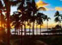 ハワイでのdポイント1周年記念で最大3,000 dポイントを獲得できるキャンペーンに参加してみた!