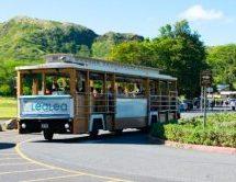 ダイナースクラブカードではハワイのLeaLeaトロリーが7日間乗り放題! 色々な観光地に無料で行ける!