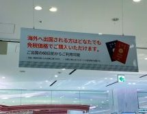 ロッテ免税店銀座で免税品を事前購入してみた! VIPカードやTカード・JALカード・dポイントカードも忘れずに!