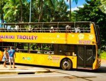 JCBブランドのクレジットカード提示で利用できるワイキキトロリーのピンクラインは誰でも利用できる無料バス!