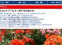 徳島県藍住町、町税のクレジットカード納付を開始