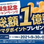 ヤマダポイントが貯まる銀行口座「ヤマダNEOBANK」が開始
